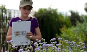 Educational Programs become observers for Nature's Notebook