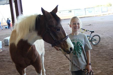 4-H member with paint horse