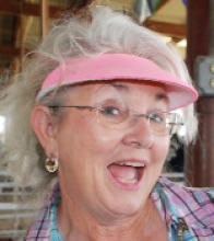 Judy Newman - AZ 4-H Hall of Fame 2010 Inductee