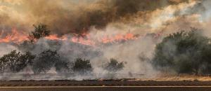 Bush Fire SR 87,Photo credit US Department of Agriculture