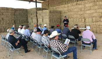 Alfalfa and forage tent talks