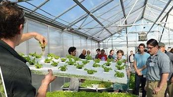 Controlled Environment Agriculture Center Workshop