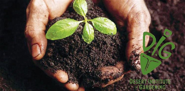 DIG - Soils and Composting